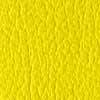 Yellow(イエロー)#041/#5021